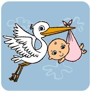 cicogna1 - I diritti della partoriente in ospedale