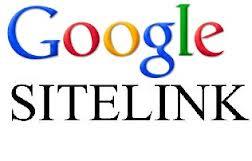 logo sitelink - Come sfruttare i sitelink di Google per mettere in evidenza il nostro sito