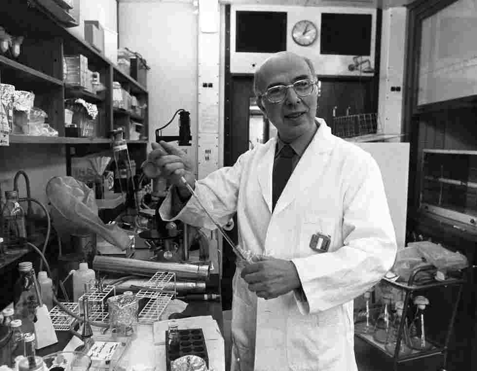dulbecco - Addio a Dulbecco: il pioniere delle ricerche sulla genetica del cancro