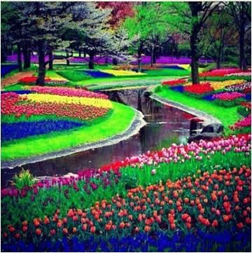 1.Keukenhof - Keukenhof, il paradiso olandese dei fiori