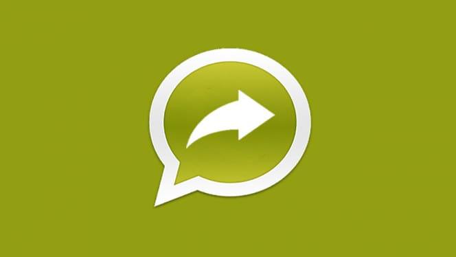 waSend Android - Come trasferire file di grandi dimensioni fino a 150 MB con WhatsApp