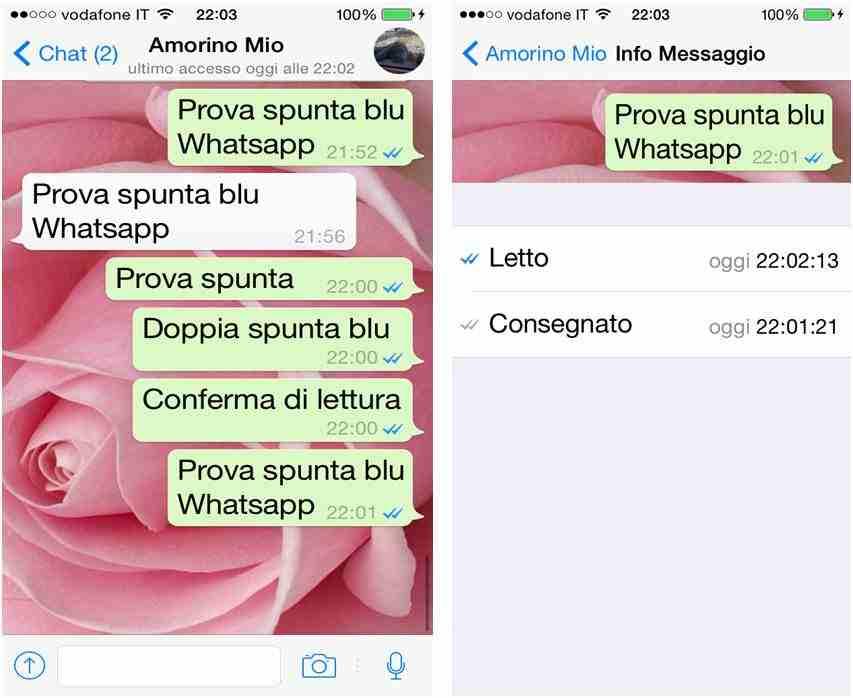 whatsapp spunta blu - WhatsApp: arriva la doppia spunta blu per la conferma di lettura