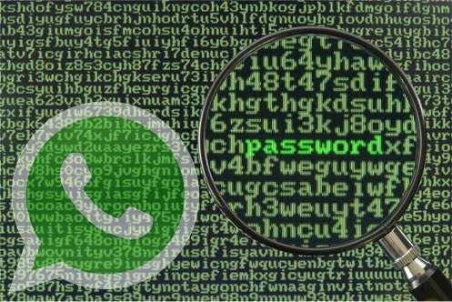 WhatsApp decriptare conversazioni - Decriptare le conversazioni di WhatsApp