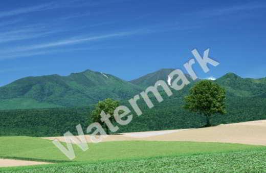 programmi per watermark - Programmi per firmare foto (Watermark)