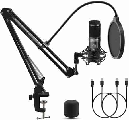 microfono per cantare pc