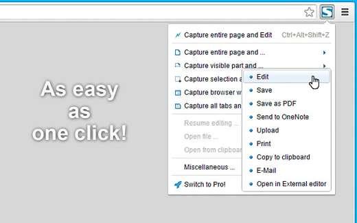 screenshot chrome extension