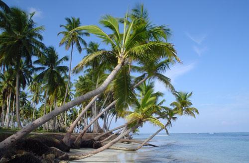 Caraibi spiagge