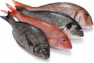 Il pesce per il bimbo