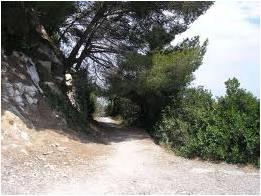 Sentiero verso Punta Bianca