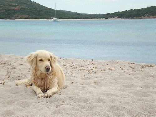 Spiaggia di Pluto a Bibione