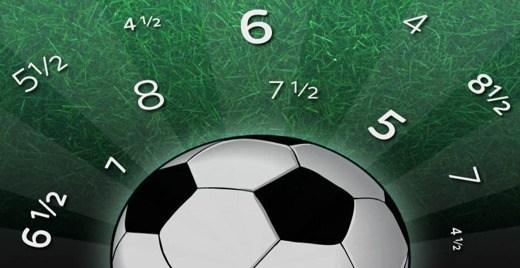 Fantacalcio 33esima giornata Serie A 2013-14