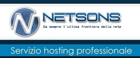 Netsons
