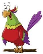 Risposta pappagallo