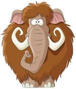 Risposta mammut