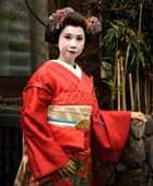 Risposta geisha