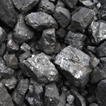 Risposta carbone