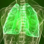 Risposta polmoni