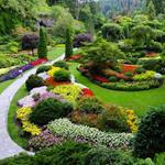 Risposta giardino