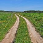 Risposta sentiero