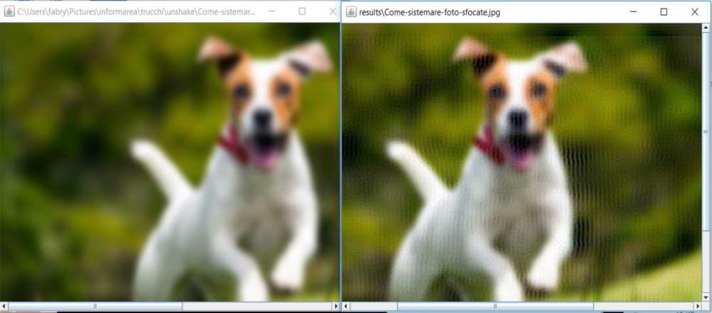 Come Sistemare Foto Sfocate Informarea