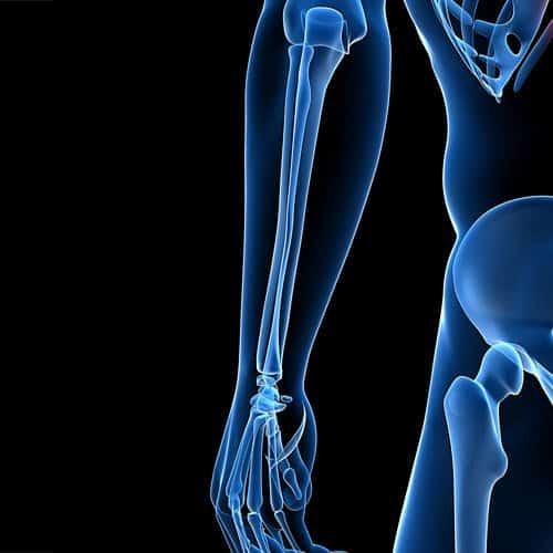 Anatomia answer: AVAMBRACCIO
