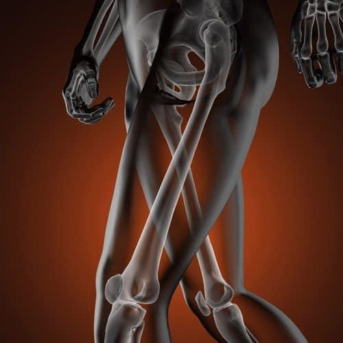 Anatomia answer: FEMORE