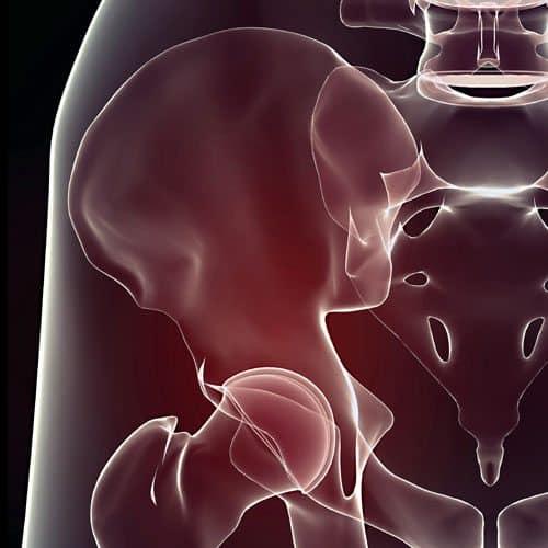 Anatomia answer: OSSO ILIACO