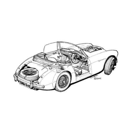 Auto Classiche answer: AUSTIN HEALEY