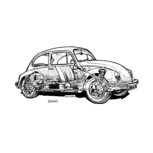 Auto Classiche answer: BEETLE