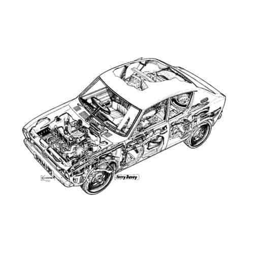Auto Classiche answer: DATSUN CHERRY
