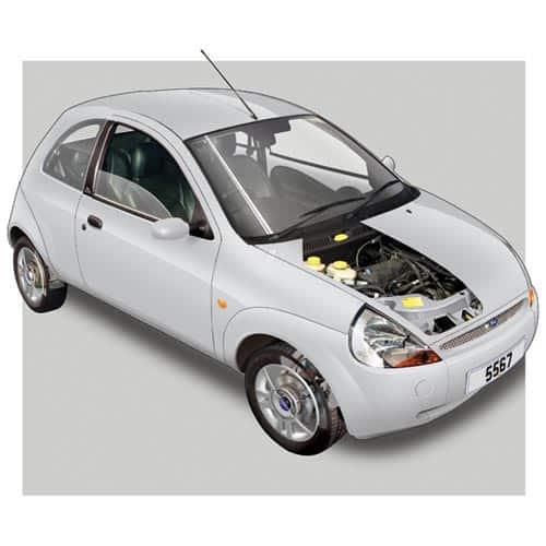Auto moderne answer: FORD KA