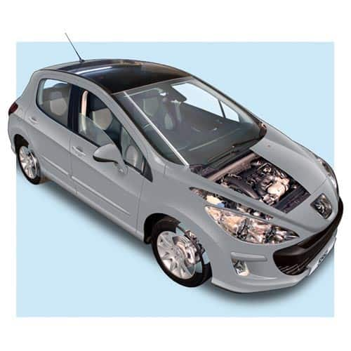Auto moderne answer: PEUGEOT 308