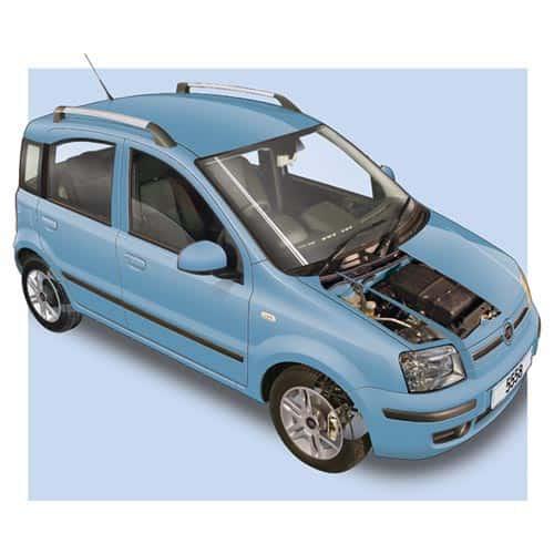 Auto moderne answer: FIAT PANDA