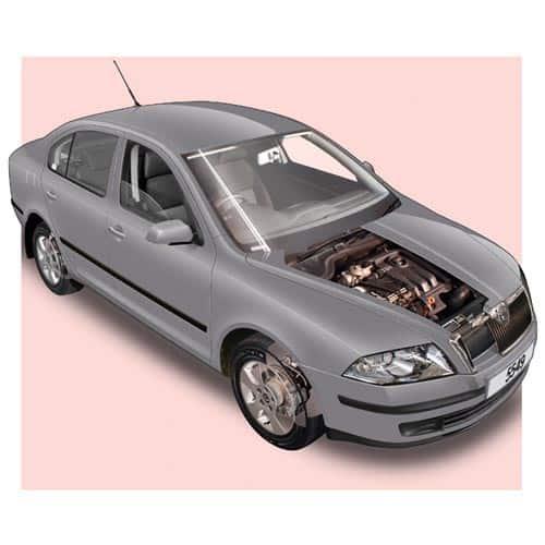 Auto moderne answer: SKODA OCTAVIA