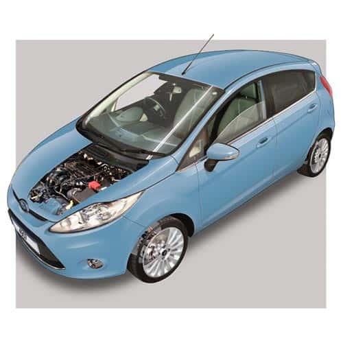 Auto moderne answer: FORD FIESTA MK6