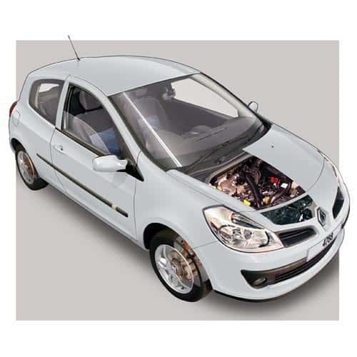 Auto moderne answer: RENAULT CLIO