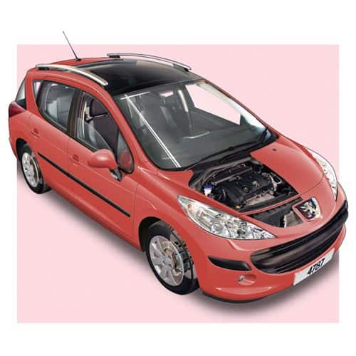 Auto moderne answer: PEUGEOT 207