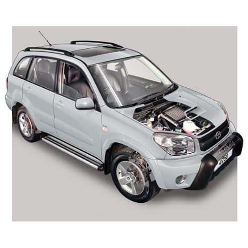 Auto moderne answer: TOYOTA RAV4