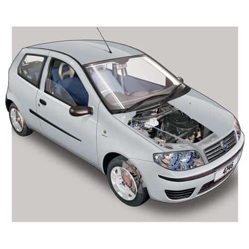 Auto moderne answer: FIAT PUNTO
