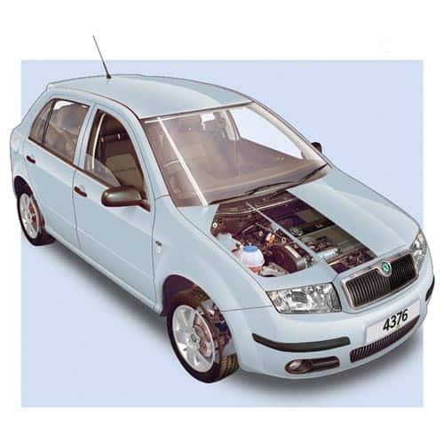 Auto moderne answer: SKODA FABIA