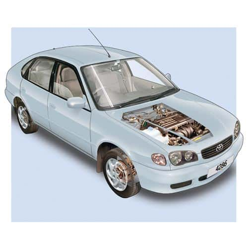 Auto moderne answer: TOYOTA COROLLA