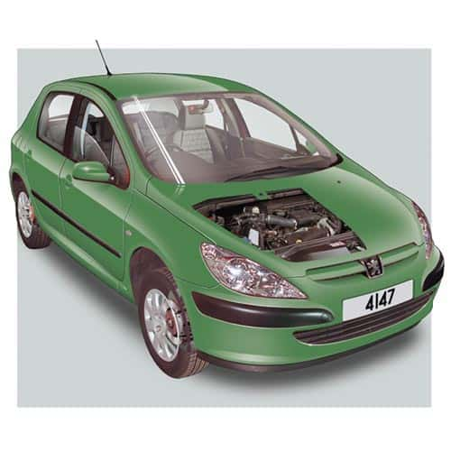 Auto moderne answer: PEUGEOT 307
