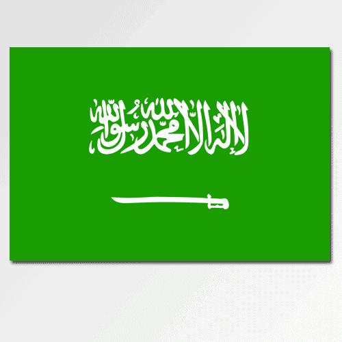 Bandiere answer: ARABIA SAUDITA