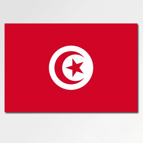Bandiere answer: TUNISIA