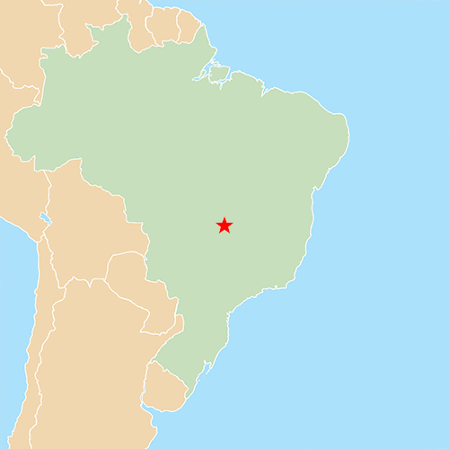 Capitali answer: BRASILIA
