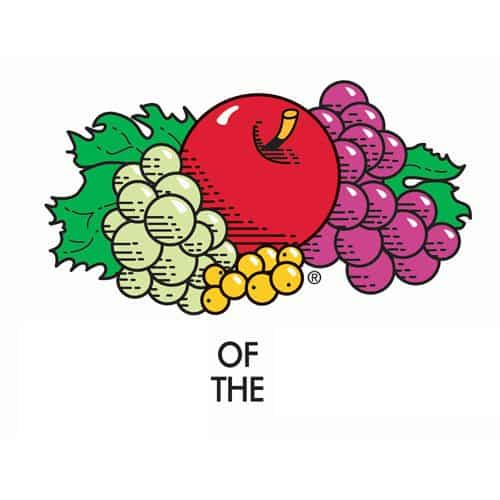 Loghi answer: FRUIT OF THE LOOM