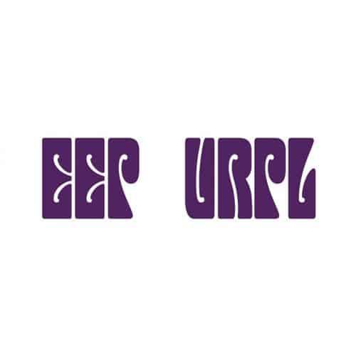 Loghi di gruppi answer: DEEP PURPLE