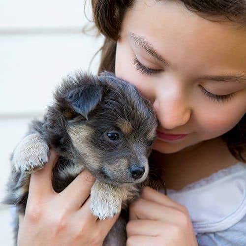 Mondo Cuccioli answer: CAGNOLINO