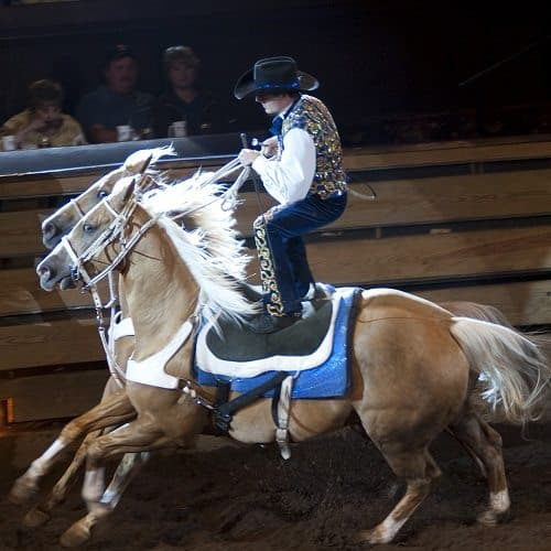 Sport answer: RODEO