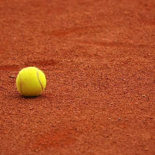 Tennis answer: TERRA BATTUTA